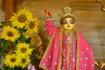 Sri Gauranga Sundar