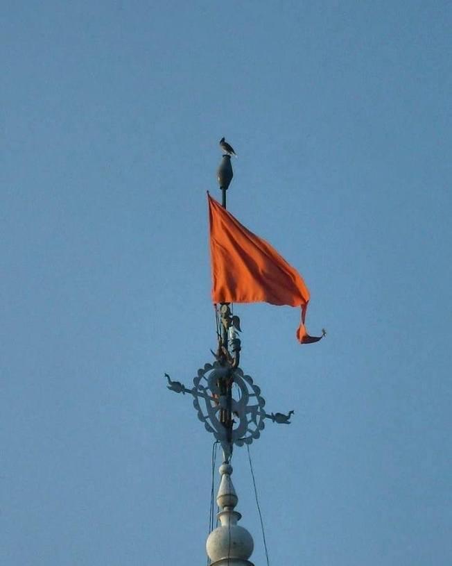 bandeira SCSMath